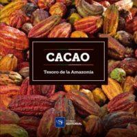 Cacao, tesoro de la Amazonía